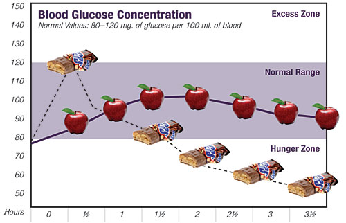 This graph illustrates the dramatic rise and fall of one's blood sugar level when we eat a high glycemic candy bar versus a low glycemic apple.
