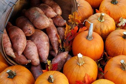 sweet_potato_pumpkin