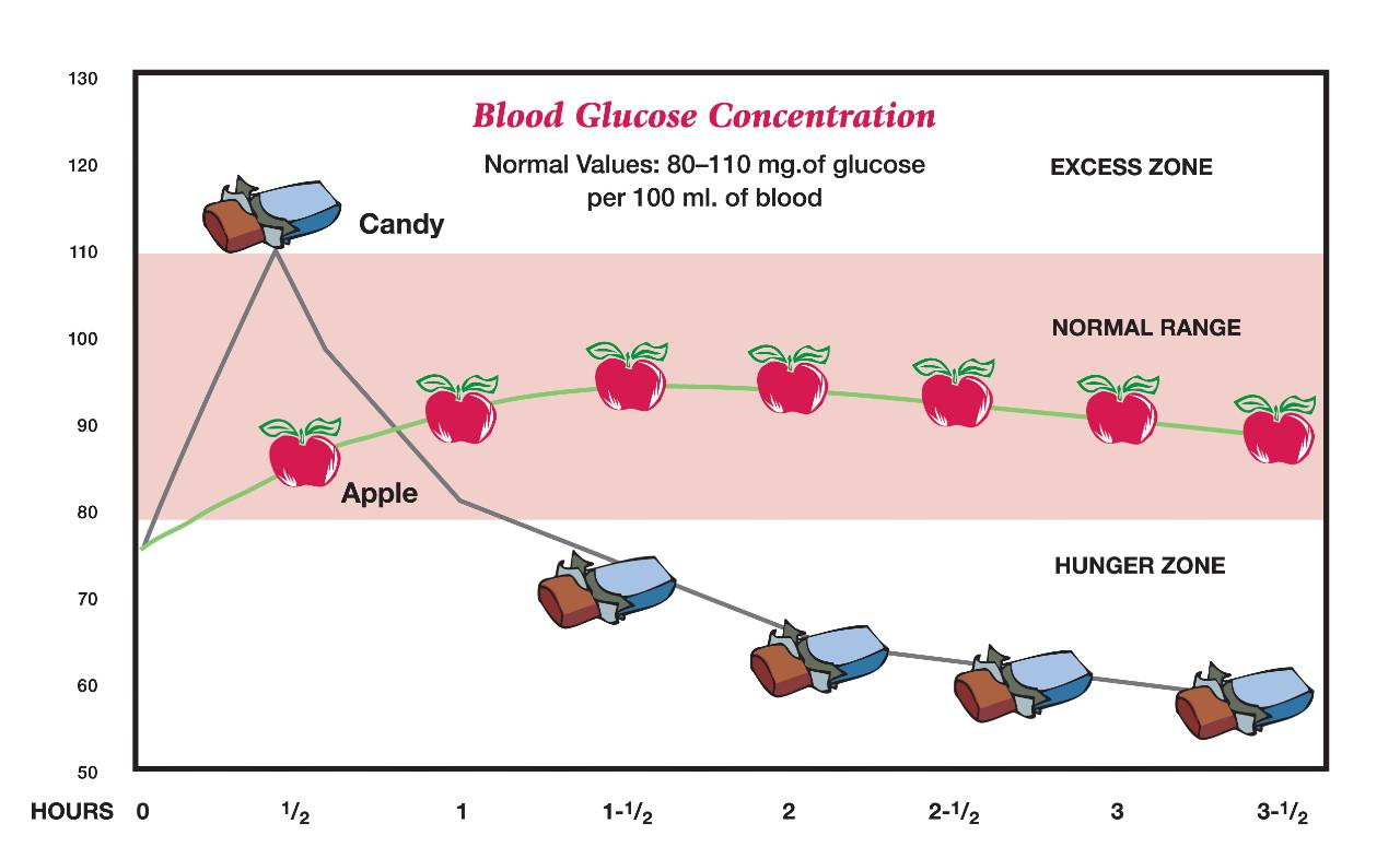 Blood Glucose Concentration