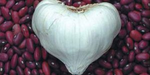 hearts-GARLIC